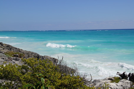 Riviera Maya's water is some of the bluest!