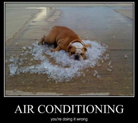 Bulldog lying on a pile of ice with the text air conditioning. You're doing it wrong.