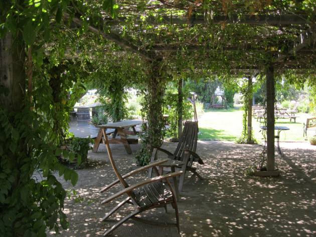 A beautiful vine-covered pergola makes a lovely resting spot
