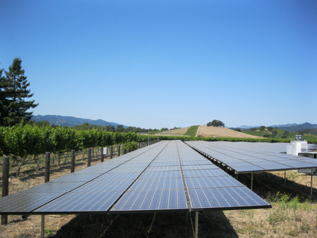 Solar panels create enough energy for the winery to run