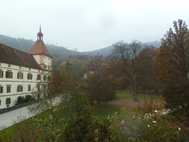 Another view of the palace and forests in the back.