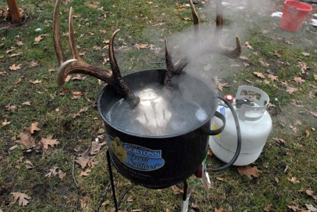Boiling the skull outdoors is the best option. Plan on the process taking a while.