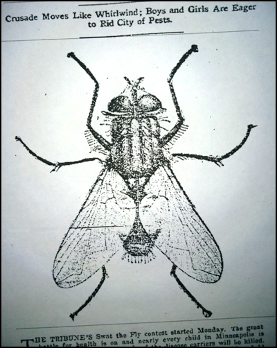 Public Enemy No. 1: The common housefly
