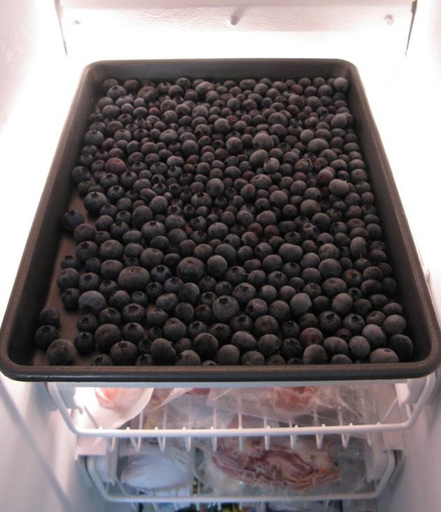Blueberry Overload Startribune Com