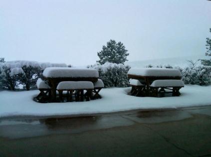 Texas Snow Funny