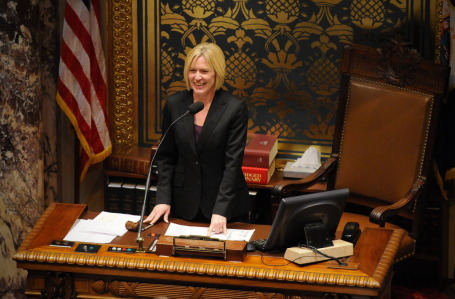 Senate President Michelle Fischbach is chair of the senate ethics committee