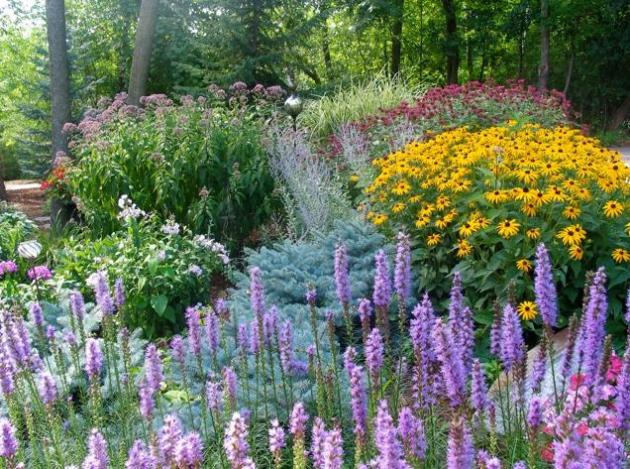 Touch of November Next Week (timely fall gardening tips ...