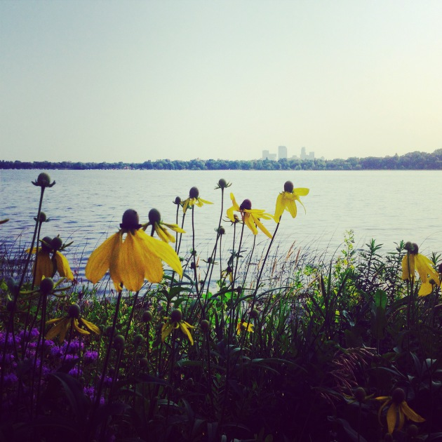 native plants along Lake calhoun
