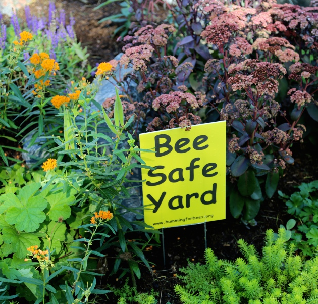 Lovely And Although Itu0027s Late In The Season, Itu0027s Not To Late To Educate And Plan  For Next Yearu0027s Bee Friendly Garden. Yard Signs ...