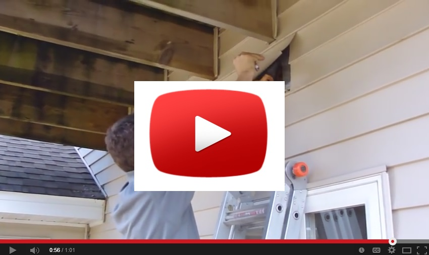 Vinyl Siding Inspection