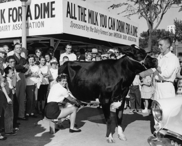 price doubles for all you can drink milk at state fair startribune com
