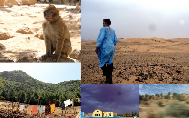Monkeys, Sahara, Middle Atlas Azrou and a stormy sky over Midelt.