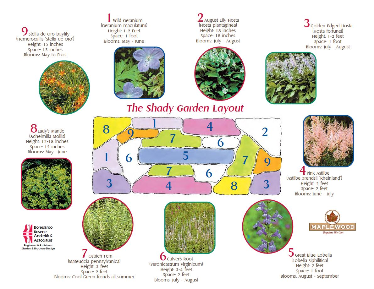 Rain Garden Designs Rain Garden Recipes  Startribune