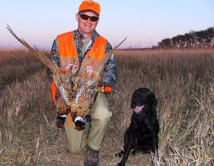Minnesota pheasant hunters look to utilize the state's first Walk In Access lands this fall. Pheasants Forever File Photo