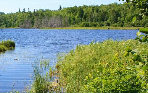 Lester Lake