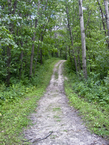 Murphy-Hanrehan Park has plenty of awesome hiking paths and welcomes bikers!