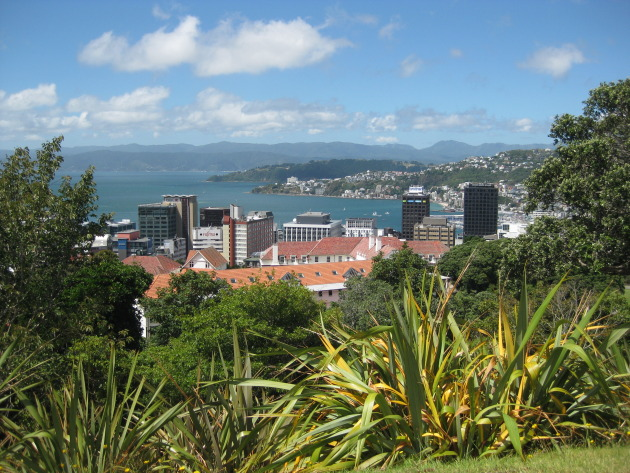 View of Wellington from the Carter Observatory in the Botanical Gardens.