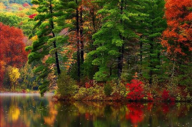 Autumnal Time-Out: 60s Today – Cold Enough for Flurries on Saturday