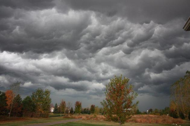 June Flashback: Heat, Humidity and Swarms of Storms