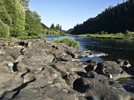 Oregon has plenty of beautiful rivers full of fish just waiting to be caught!