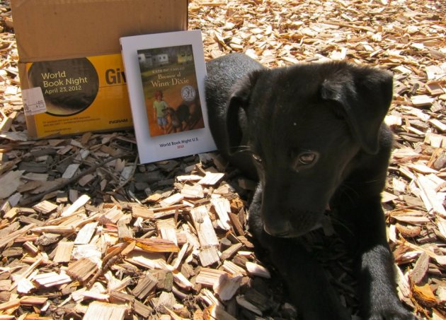 "Rosie the puppy was a great prop for giving away ""Because of Winn-Dixie."""