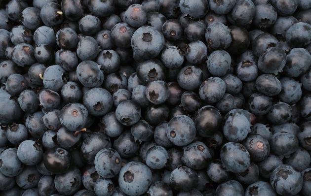 blueberry vengeance 2