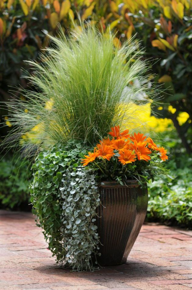 3 types of container garden styles which one are you for Garden planter ideas