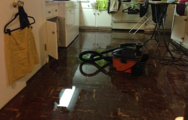 The Jungles of Minnesota – Record Rains Thursday – Flood Warnings Posted